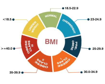 BMI Calculator For Weight Loss
