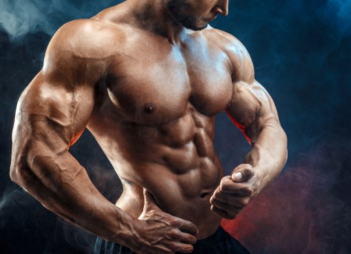 Muscle Building: A Great Way To Improve Your Life – More Than A Hobby