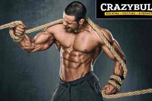 CrazyBulk Legal Steroids Supplement Review – Take Your Bodybuilding To The Next Level!