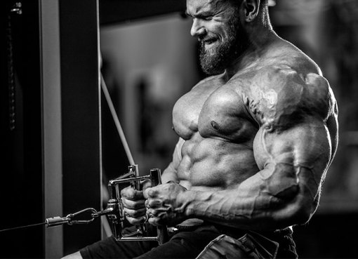 7 Best Supplements For Muscle Gain And Weight Loss