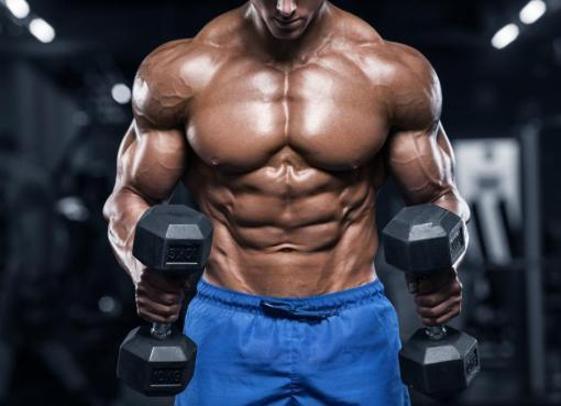 Somatropinne HGH Vs HGH-X2 – All-Natural Muscle Building Supplement