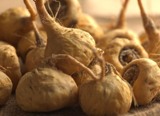 Benefits Of Maca Root For Men