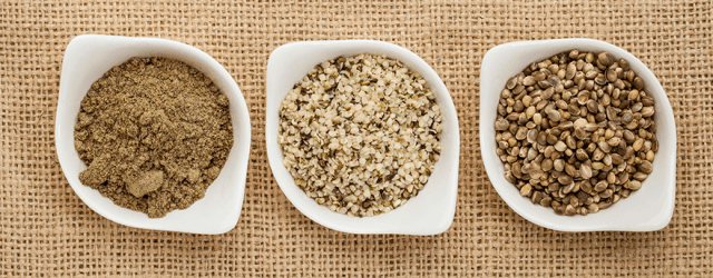 Benefits Of Plant Protein For Bodybuilding