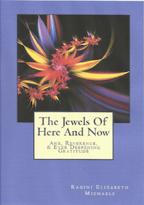 Cover of Jewels of Here and Now