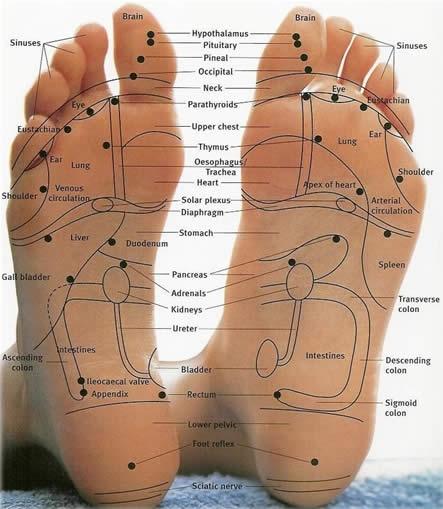 reflexology toes