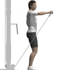 Front Raise One Arm Cable  Exercise  StrengthTraining