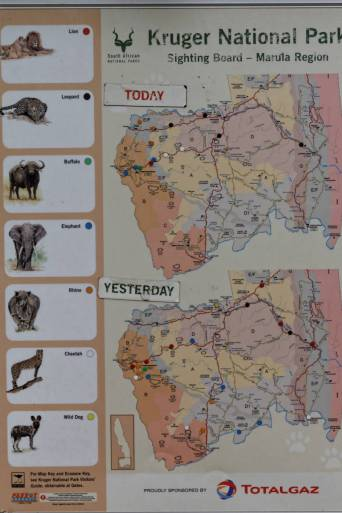 Sighting Board im Camp Pretoriuskop (Kruger NP)