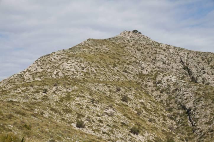Atalaya d'Alcudia