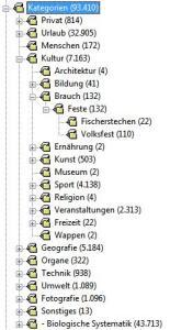 iMatch Kategorienbaum
