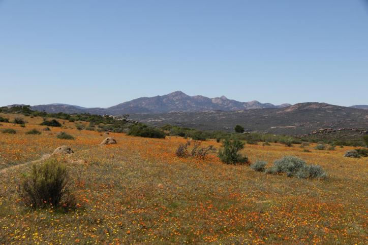 Namaqua NP