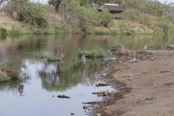 Pioneer Dam