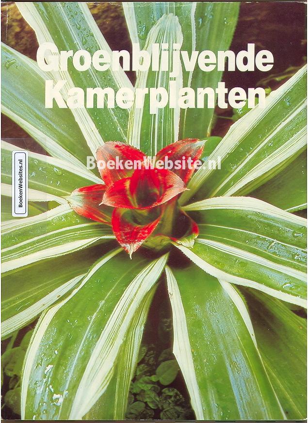 Groenblijvende Kamerplanten  afbeelding  Boeken Websitenl