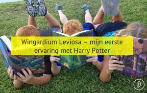 Wingardium Leviosa - mijn eerste ervaring met Harry Potter