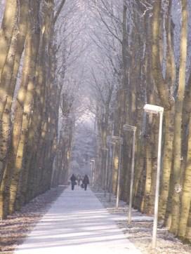 winter20075