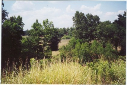 2001-DTS1