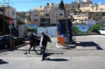 israel-do49.jpg