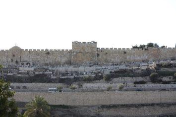 israel-do62.jpg