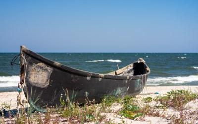 Legea Pescuitului 2021, un nou început pentru pescuit, pescari și biodiversitatea acvatică