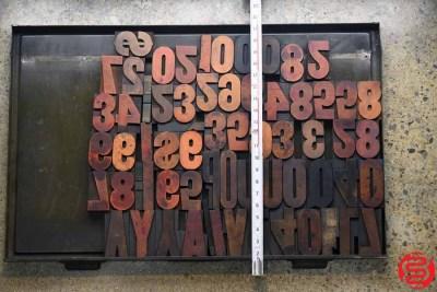 Assorted Letterpress Wood Type - 022120100730