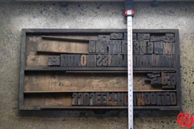 Assorted Letterpress Wood Type - 022120113545