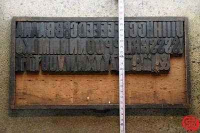 Assorted Letterpress Wood Type - Full Capitals - 2.5 - 032520111530