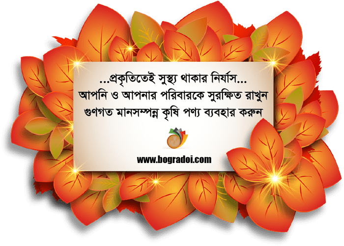 Bogurar-Doi-Bogra-Doi-Bogura-Doi-Best-Sweets-BD-Online-Shop-Dhaka-Bangladesh