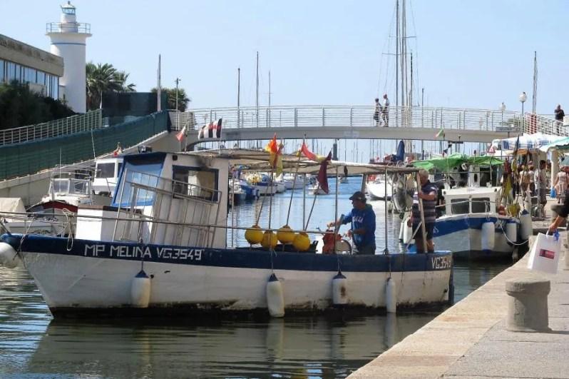 De haven van Viareggio
