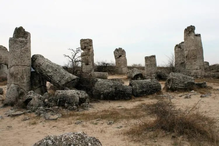 Stone Forest in Bulgaria