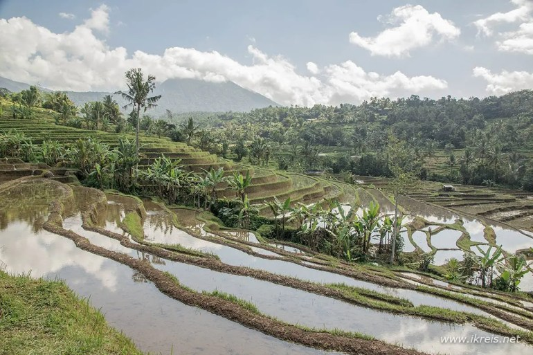 Naar Indonesië met Jenny van IkReis