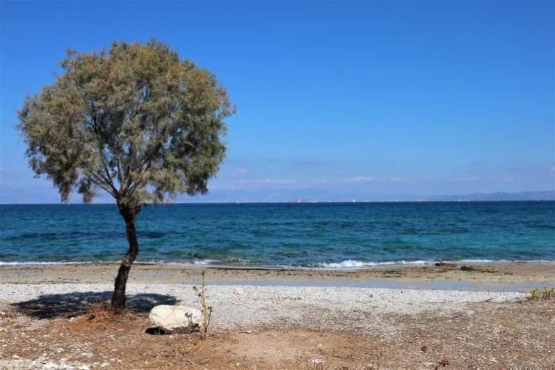 Stranden op Agistri in Griekenland