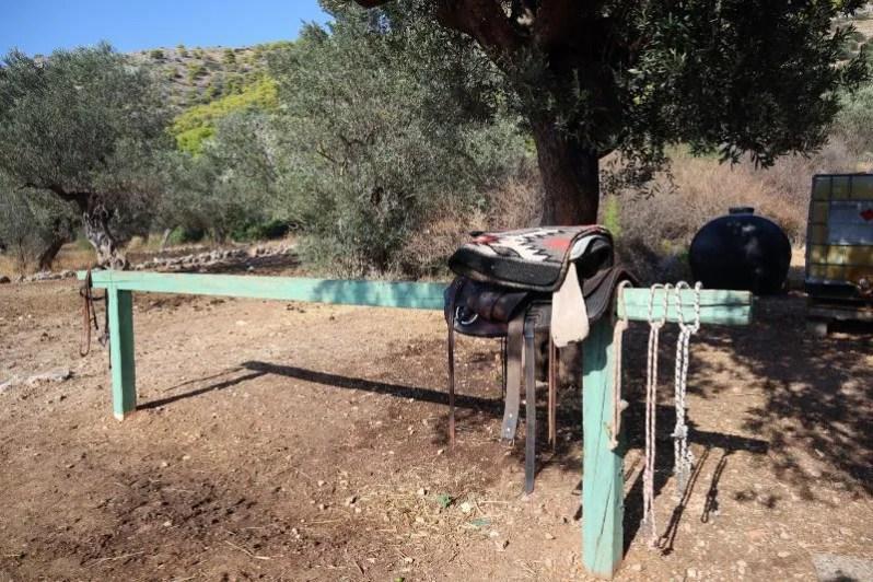 Paardrijlessen in Griekenland