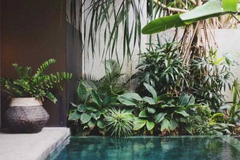 Vakantie in de achtertuin