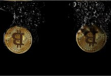 Črtá sa kryptomenám rovnaký osud ako dotcom spoločnostiam?