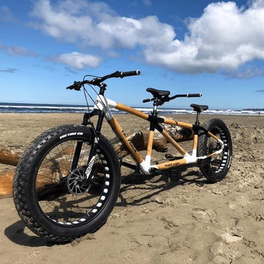 Najdziwniejsze rowery z bambusa tandem fat