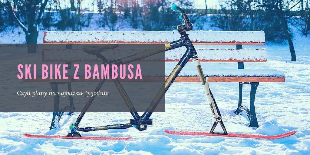 ski bike z bambusa ławka zima