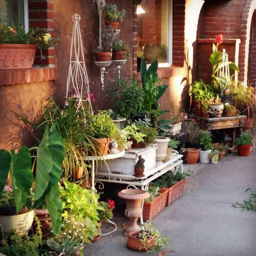 Bohemian Garden Designs And Backyard Ideas