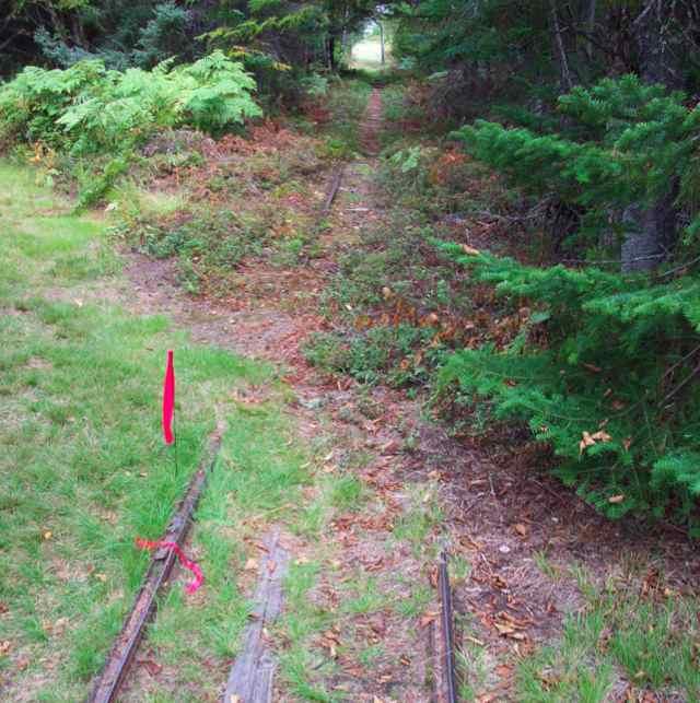 railline.jpg