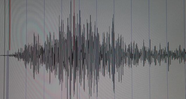 seismograph.jpg