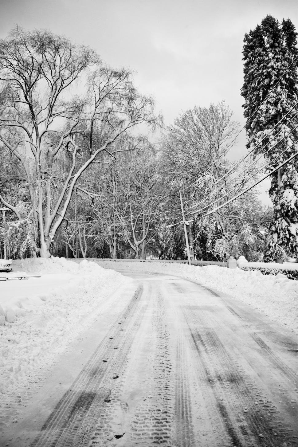 snowday-17.jpg