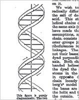Odile Crick, DNA illustrator (RIP) / Boing Boing
