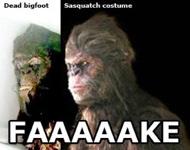 Images  Faaaaake