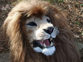 HOWTO make an animatronic lion mask with superpowers / Boing