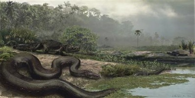 Wp-Content Uploads 2009-02-04T160323Z 01 Btre51318Lx00 Rtroptp 3 Science-Us-Snake-Giant