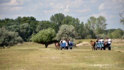 Atracții în județul Tulcea
