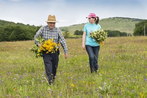 Older man and young woman walking in a meadow.