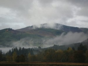 Boistfort Mountain dressed in fog