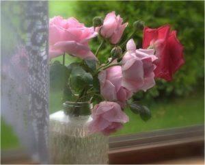 marie-andree-vip-blog-1384703255