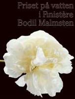 Priset på vatten i Finistère - Bodil Malmsten