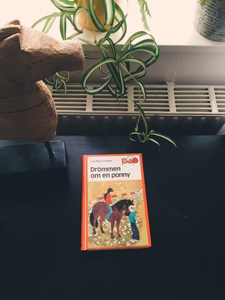 Drömmen om en ponny av Nan Inger Östman