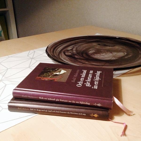 Två av Bodil Malmstens loggböcker